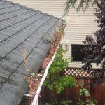 Why do gutters leak?