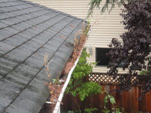 Why do gutters leak?